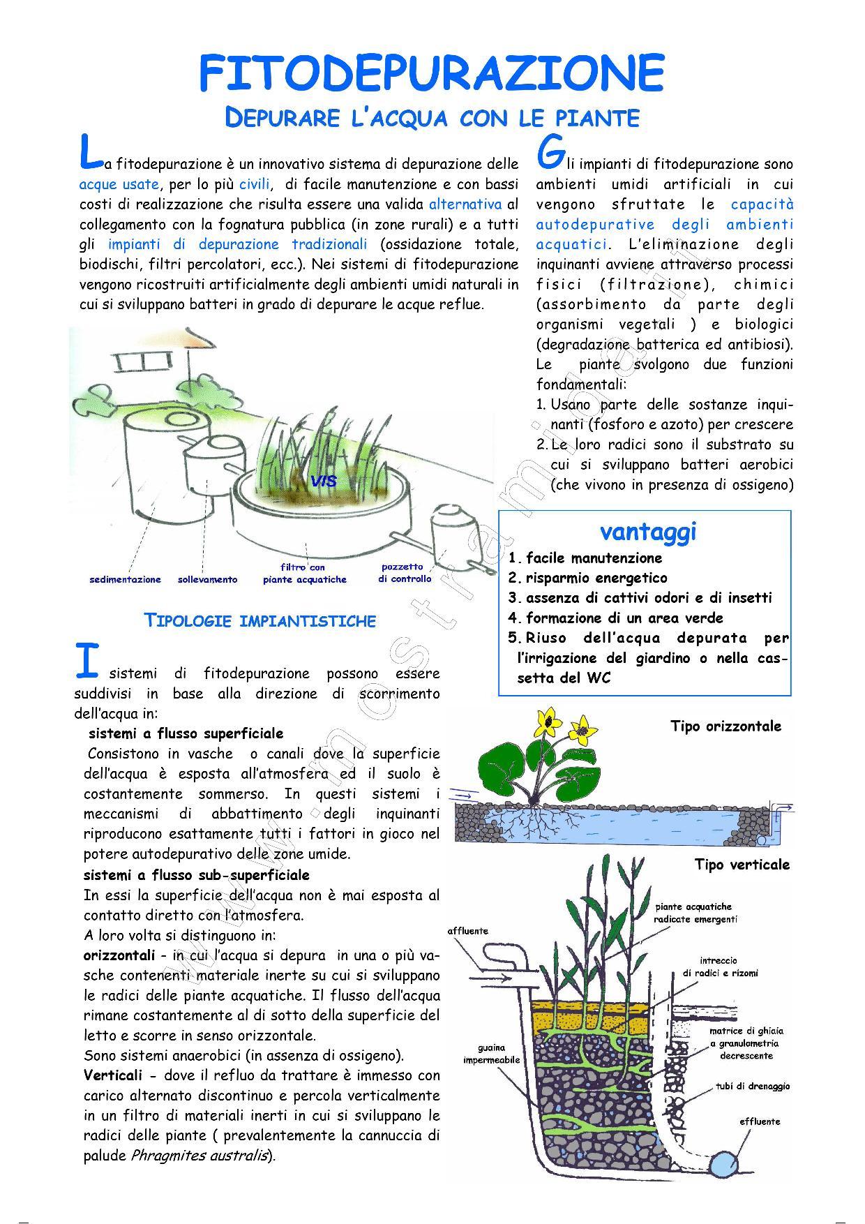MIDA - Fitodepurazione, depurazione dell'acqua
